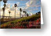 Clemente Greeting Cards - San Clemente Evening Greeting Card by Timothy OLeary
