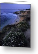 Surf Lifestyle Greeting Cards - San Diegos Cliff-lined Pacific Shore Greeting Card by Michael Melford