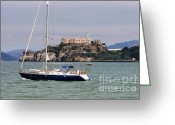 Sausalito Greeting Cards - San Francisco Sailing Greeting Card by Tap On Photo