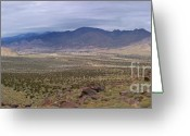 Visual Artist Greeting Cards - San Jacinto Wilderness Greeting Card by Viktor Savchenko