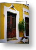 Screen Doors Greeting Cards - San Juan Doors Greeting Card by Perry Webster