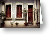 Screen Doors Greeting Cards - San Juan Living Greeting Card by Perry Webster