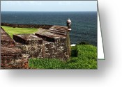 Puerto Rico Greeting Cards - San Juan Lookout Greeting Card by John Rizzuto