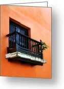Old San Juan Greeting Cards - San Juan Window Greeting Card by Perry Webster