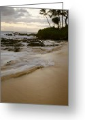 Golden Sand Greeting Cards - Sanctuary Greeting Card by Sharon Mau