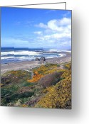 Sand And Sea Greeting Cards - Sand And Sea 15 Greeting Card by Will Borden