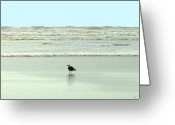Sand And Sea Greeting Cards - Sand And Sea 8 Greeting Card by Will Borden