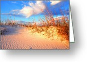 Oats Greeting Cards - Sand Dune and Sea Oats at Sunset Greeting Card by Thomas R Fletcher