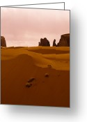 Desolate Landscapes Greeting Cards - Sand Dune, Monument Valley, Navajo Greeting Card by Ralph Lee Hopkins