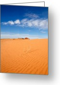 Plants Pyrography Greeting Cards - Sand Dunes in San Rafael Desert Greeting Card by Utah Images