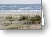 Sea Oats Digital Art Greeting Cards - Sand Dunes Greeting Card by Paulette  Thomas