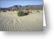Desolate Landscapes Greeting Cards - Sand Dunes & San Ysidro Mountains At El Greeting Card by Rich Reid