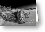 Beach Photograph Greeting Cards - Sand Fence Greeting Card by Jim Dohms