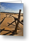 Sand Fences Photo Greeting Cards - Sand Greeting Card by Heather Applegate