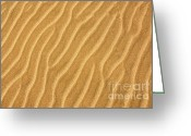 Summer Beach Ocean Greeting Cards - Sand ripples abstract Greeting Card by Elena Elisseeva