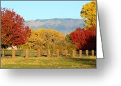 Sandias Greeting Cards - Sandia Colors_Rio Grande Blvd_Albuquerque_New Mexico Greeting Card by Jon William Lopez