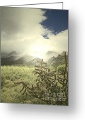 Storm Prints Greeting Cards - Sandia Mountains Fog Greeting Card by Andrea Hazel Ihlefeld