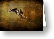 Sandpiper Greeting Cards - Sandpiper Piping Greeting Card by Lois Bryan