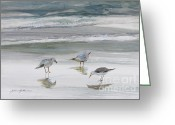 Watercolor On Paper Greeting Cards - Sandpipers Greeting Card by Julianne Felton