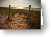 Beach Photo Greeting Cards - Sandswept Greeting Card by Jason Naudi Photography