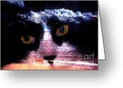 Clayton Photo Greeting Cards - Sandy Paws Greeting Card by Clayton Bruster