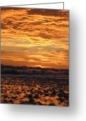 Florida Sunset Greeting Cards - Sanibel Island Greeting Card by Nick Flavin