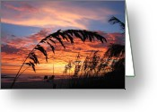Yellow Photo Greeting Cards - Sanibel Island Sunset Greeting Card by Nick Flavin