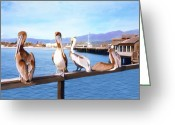 Santa Barbara Digital Art Greeting Cards - Santa Barbara Pelicans Greeting Card by Kurt Van Wagner