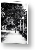 Jogging Photo Greeting Cards - Santa Monica Jogging Greeting Card by John Rizzuto