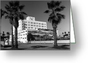 Whale Beach Greeting Cards - Santa Monica Whale Wall Greeting Card by Joe  Palermo