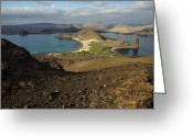 Bartolome Greeting Cards - Santiago Island Seen From Bartolome Greeting Card by Tim Laman