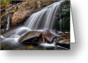Nantahala Forest Greeting Cards - Sassy Waters Greeting Card by Debra and Dave Vanderlaan