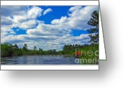 Flooding Greeting Cards - Satilla River Greeting Card by Diana  Tyson