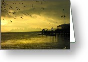 Vari Buendia Greeting Cards - Sausalito Morning Greeting Card by Vari Buendia