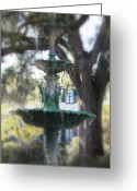 Live Oak Trees Greeting Cards - Savannah Green Greeting Card by Carol Groenen