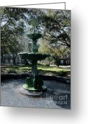 Savannah Square Greeting Cards - Savannah Splash Greeting Card by Carol Groenen
