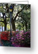 Savannah Square Greeting Cards - Savannah Street Lamp in Springtime Greeting Card by Carol Groenen