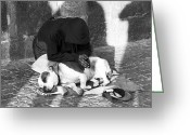 Dog Photographs Greeting Cards - Say a Prayer in Prague Greeting Card by John Rizzuto
