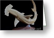 Still Life Sculpture Greeting Cards - Scalloped Hammerhead Greeting Card by Kjell Vistnes