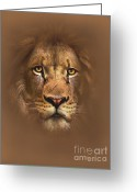 Lion Greeting Cards - Scarface Greeting Card by Robert Foster