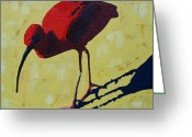 Yellow Beak Painting Greeting Cards - Scarlet Ibis Greeting Card by Donald Amorosa