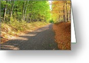 Fall Scenes Greeting Cards - Scenic ATV Trail Greeting Card by Randy Rosenberger