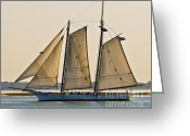 Sailboat Picture Greeting Cards - Scenic Schooner Greeting Card by Al Powell Photography USA