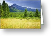Grasses Greeting Cards - Scenic view in Canadian Rockies Greeting Card by Elena Elisseeva
