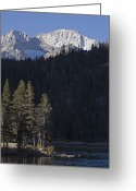 Abbot Greeting Cards - Scenic View Of Mount Abbot 13701 Ft Greeting Card by Rich Reid