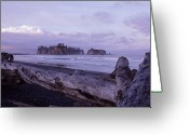 Olympic National Park Greeting Cards - Scenic View Of The Pacific Ocean Greeting Card by Kenneth Garrett