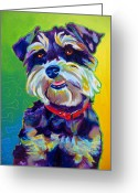 Dawgart Greeting Cards - Schnauzer - Charly Greeting Card by Alicia VanNoy Call
