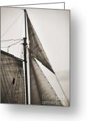 Historic Lighthouse Greeting Cards - Schooner Pride Tall Ship Yankee Sail Charleston SC Greeting Card by Dustin K Ryan