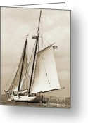 Sailing Fast Greeting Cards - Schooner Sailboat Spirit of South Carolina Sailing Greeting Card by Dustin K Ryan