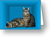 Quantum Mechanics Greeting Cards - Schrodingers Cat, Artwork Greeting Card by Victor De Schwanberg
